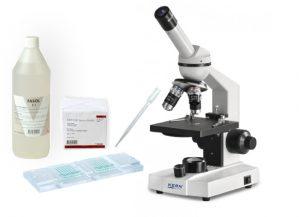 Parasitologisk undersøgelse
