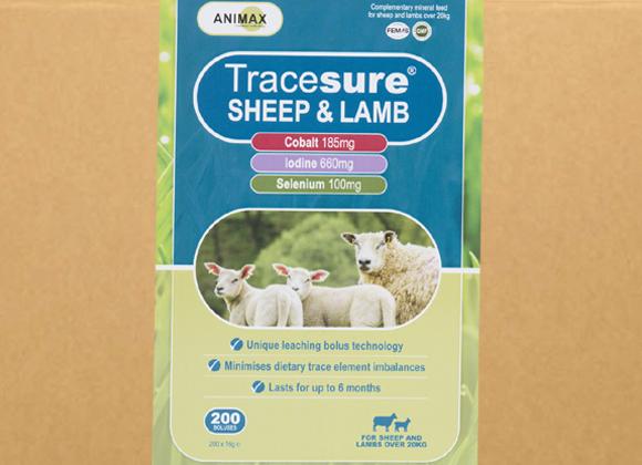 Tracesure Sheep & Lamb 200
