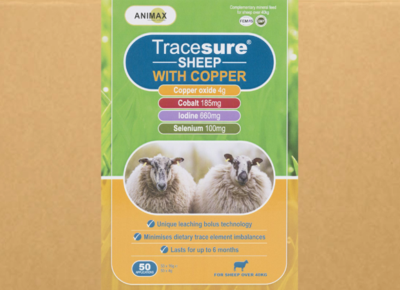 Tracesure Sheep Med Kobber 50